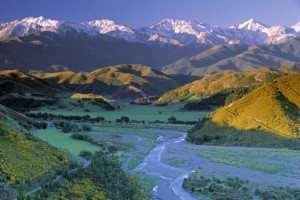 south-island-new-zealand-Kaikoura-New-Zealand